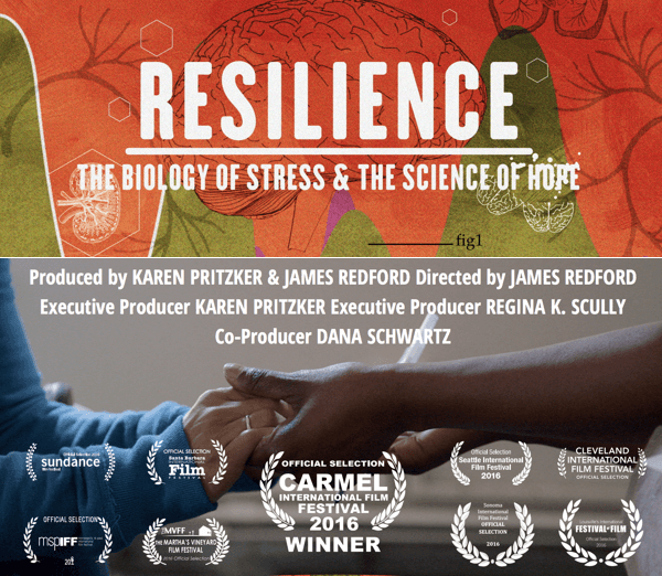 VPC Resilience Movie Hope Project (1)